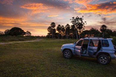 Estrada Parque - Pantanal da Nhecolândia, MS.